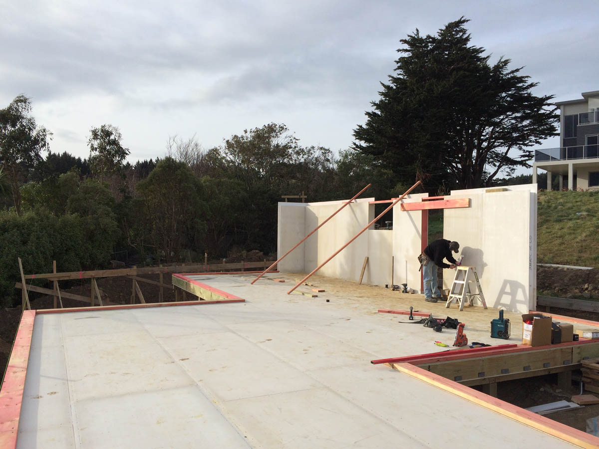 Dunedin S First Structural Insulated Panel Home Architype